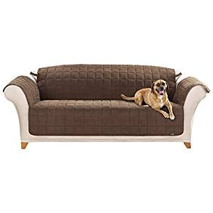 Best Couch Covers For Dogs Cats 2020